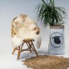 A27 Schapenvacht gemeleerd stoel Sheepycc